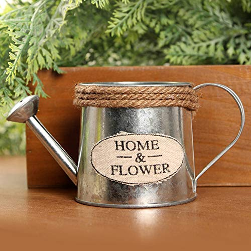Noble Blumen-Topf Eimer, Metall, Eisen, Blumentopf Eimer Krüge Pitcher Blumenvase Metall Gießkanne Pflanzen Übertopf 1