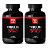 Premium Tribulus Terrestris 1000mg - Standardized 40% Saponis Extract - Natural Testosterone Booster (2 Bottles 180 Tablets)