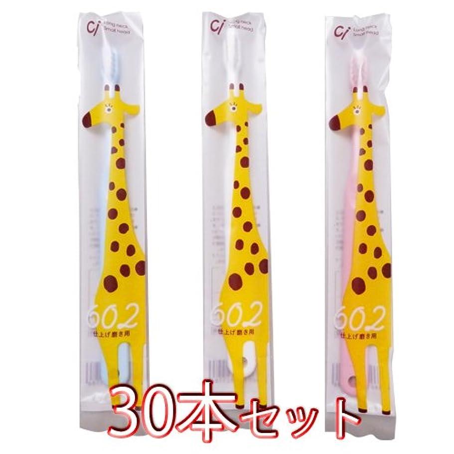 サンダルコンテンツ特派員Ciメディカル 歯ブラシ Ci602 仕上げ磨き用 30本入