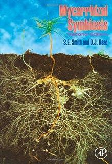 Mycorrhizal Symbiosis