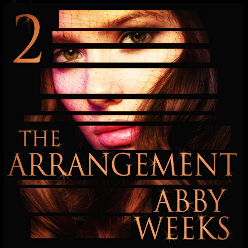 The Arrangement 2  audiobook cover art