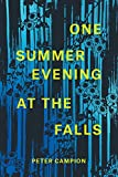 One Summer Evening at the Falls (Phoenix Poets)