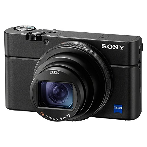 ソニー コンパクトデジタルカメラ サイバーショット Cyber-shot DSC-RX100M6