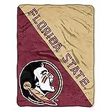 The Northwest Company Florida State Seminoles 'Halftone' Micro Raschel Throw Blanket, 46' x 60' , Red