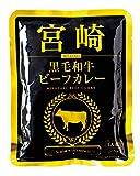 宮崎黒毛和牛ビーフカレー 160g
