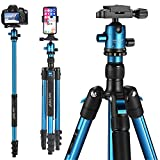 10 Best Slr Tripod with Sturdies
