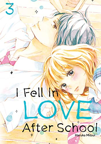 I Fell in Love After School Vol. 3