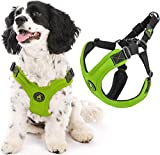 Gooby Dog Harness - Lime, Medium - Escape Free Sport Patented Step-in Neoprene Small Dog Harness - Perfect on The Go Four-Point Adjustable Harness for Small Dogs or Cat Harness