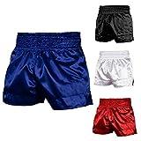 Roar Muay Thai Shorts MMA Gym Boxing Fighting UFC Trunks Kick Martial Arts Gear (Blue, Large)