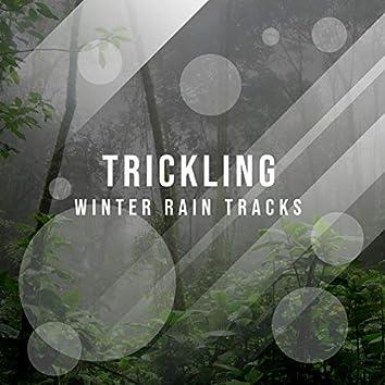 Trickling Winter Rain Tracks