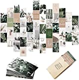Botanical Wall Collage Kit Aesthetic Pictures, Aesthetic Room Decor, Bedroom Decor for Teen Girls, Wall Collage Kit, VSCO Room Decor, Aesthetic Posters, Collage Kit, Boho Plants (50 Set 4x6 inch)