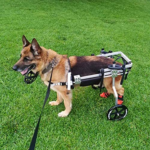 Cora Pet Adjustable 2 Wheels Aluminum Dog Wheelchair for Disabled Dogs' Hind Legs Rehabilitation from 9 to 18KG (M)