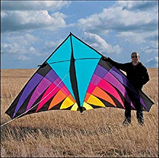 Free Shipping Outdoor Fun Sports Nylon Power Triangle Kite Good Flying