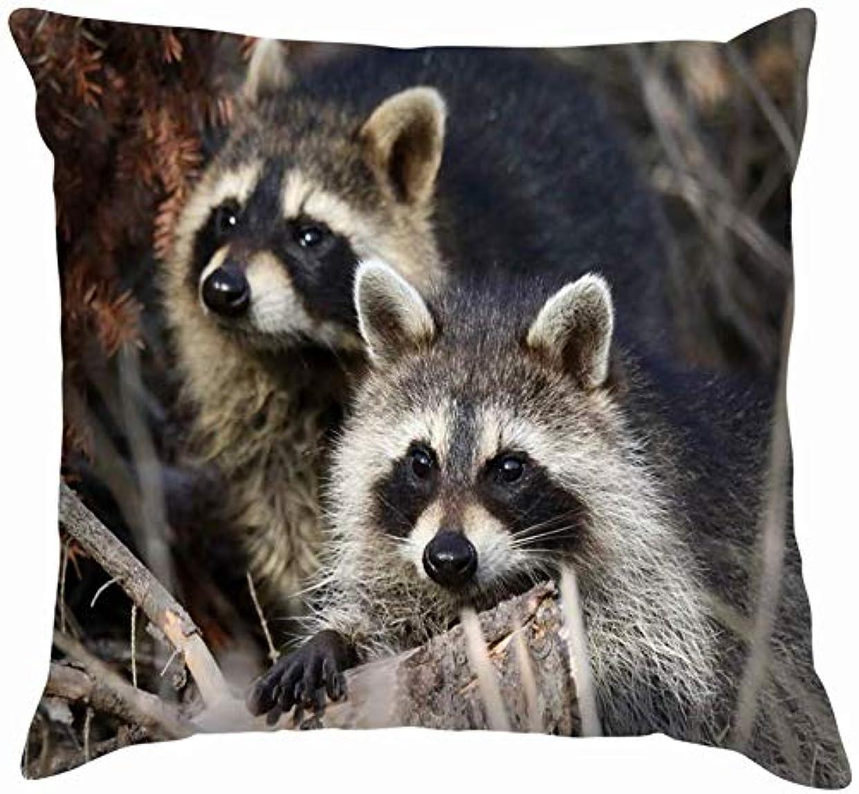 レモンラジウムピン慎重な動物である若いアライグマ野生動物投げる枕カバーホームソファクッションカバー枕カバーギフト45x45 cm