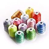 Sin FXF-frx, 12 populares colores variegados poliéster bordado máquina hilo de 100 yardas bobina de hilo