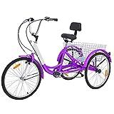 10 Best 3 Wheeled Bikes
