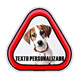 Pegatina vinilo impreso para coche PERSONALIZADA, perro a bordo con foto o texto