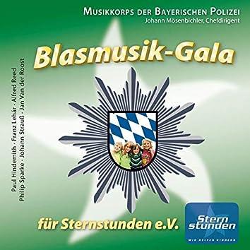 Blasmusik-Gala für Sternstunden e.V.