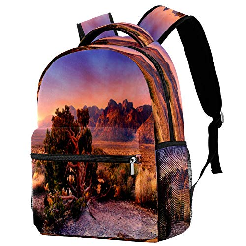 San Francisco Skyline - Mochila escolar para viajes, diseño de libro, estampado 3 (Multicolor) - bbackpacks004