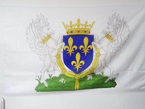 AZ FLAG Flagge Wappen KÖNIGREICH Frankreich Charles VI 90x60cm - KÖNIGREICH DER Franzosen Fahne 60 x 90 cm Scheide für Mast - flaggen Top Qualität