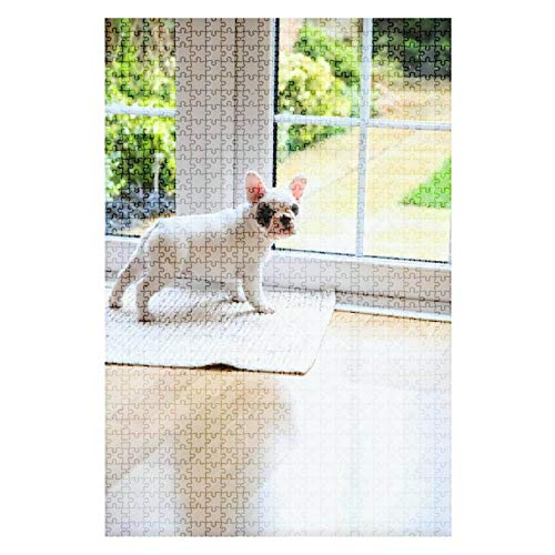 Wooden Jigsaw Puzzle 8 weeks old Pied French Bulldog Puppy waiting at the door to go 1000 Pieces for Adult Children Educational Decompression DIY Toys Gifts Fits Together Perfectly Multicolor