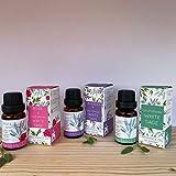 Aromafume White Sage, White Sage & Lavender, White Sage & Rose - Essential Oil Blend Set of 3 x 10ml for Diffuser - Essential Oil Blend, Smoke-Free, Non Toxic Alternative to Incense & Smudges