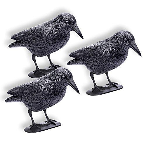 Schramm 3 Pezzi Corvi seduti Corvi Neri spaventa Uccelli spaventa Uccelli spaventa Corvi di plastica difensivi difensivi difensivi per Uccelli