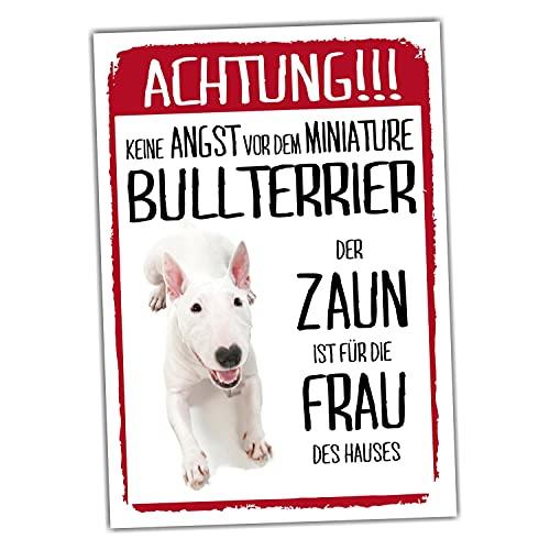 Miniature Bullterrier Dog Schild Achtung Zaun Frau Spruch Türschild Hundeschild Warnschild Fun