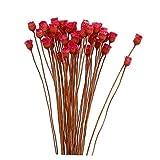 NaiCasy 50pcs / Set Flor Artificial Decoración Natural de Flores secas Ramo Decorativo de Flores secas para la decoración del Banquete de Boda en florero fotografía apoya Rojo