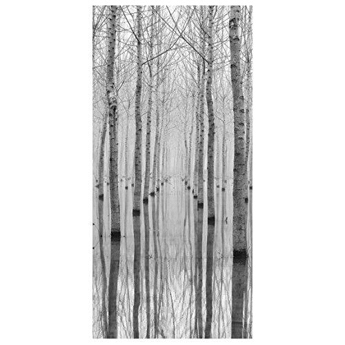Raumteiler Birken Im November 250x120cm inkl. transparenter Halterung