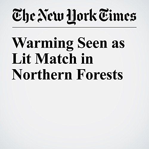 Warming Seen as Lit Match in Northern Forests cover art