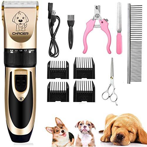 Eyeleaf Tosatrice per Cani Professionale, Tosatore Elettrico per Gatti Pelo Lungo Ricaricabile con Toelettatura Accessori Cavo USB Strumento di Pulizia Oro
