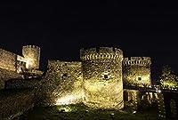 都市ベオグラード要塞夜セルビア街灯大人のパズル子供1000ピース木製パズルゲームギフト家の装飾特別な旅行のお土産
