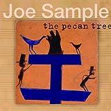 Songtexte von Joe Sample - The Pecan Tree
