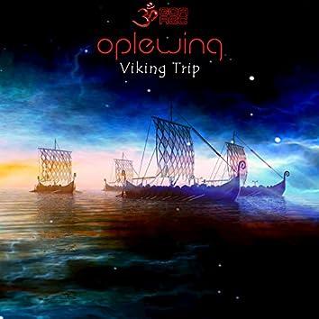 Viking Trip