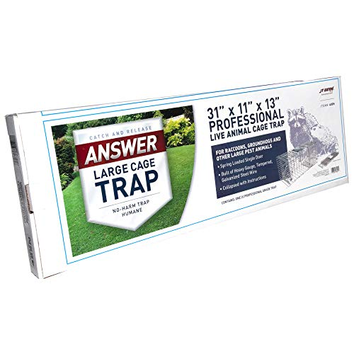 """Answer Single Door Live Animal Cage Trap for Medium to Large Size Pests, 31"""" x 11"""" x 13"""" - JT Eaton 485N"""