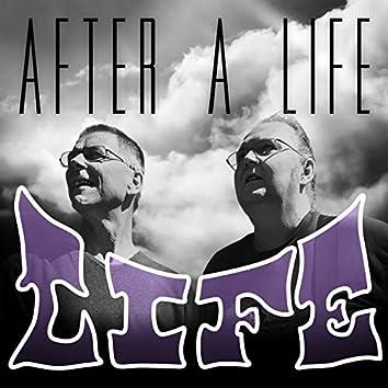 Life (After a Life)