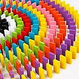 Set da 240 Pezzi Domino Kit di Costruzione per Raduno in Legno Standard Autentico in Tiglio Gioco per Bambini Gioco da Corsa Giocattoli educativi per Bambini