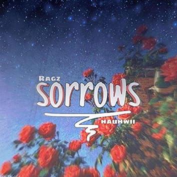 Sorrows (feat. Hauhwii)