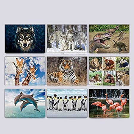 Animals Postcard 3-Pack by Cuddles and Rage