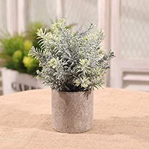 Artificial and Dried Flower Simulated Miniature Plants Office Decoration Plants Artificial Plants Artificial Eucalyptus and Rosemary Carnation Caronation – ( Color: D )