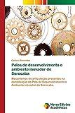 Polos de desenvolvimento e ambiente inovador de Sorocaba: Mecanismos de articulação presentes na constituição do Polo de Desenvolvimento e Ambiente inovador de Sorocaba.
