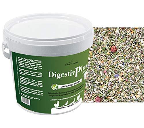 FINCA CASAREJO Alimento gallinas. Digestiv Plus. Salud intestinal para Tus Aves. DigestivPlus (750 grs)