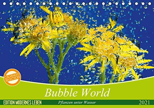 Bubble World - Pflanzen unter Wasser (Tischkalender 2021 DIN A5 quer)