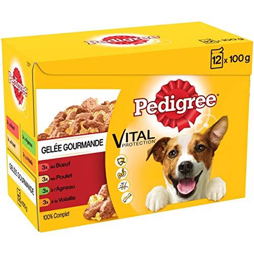 Pedigree Vital Protection - Sachets fraîcheur pour chien adulte aux 4 saveurs en gelée, 48 sachets repas de 100g