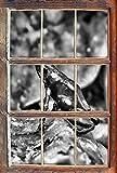 Stil.Zeit Monocrome, Kleiner schwarzer Baumsteiger Frosch Fenster im 3D-Erscheinungsbild, Wand- oder Türaufkleber Format: 62x42cm, Wandsticker, Wandtattoo, Wanddekoration