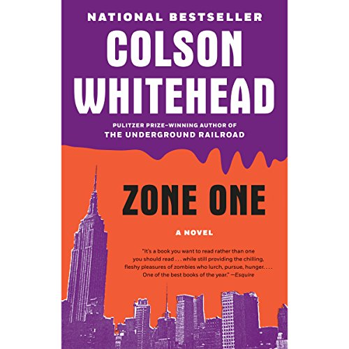 Image result for colson whitehead zone one