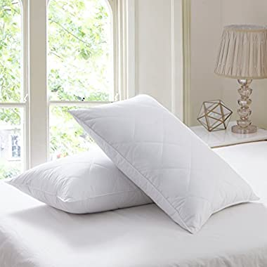 Set of 2 Goose Feather Pillows Queen Size - 600 Thread Count Cotton Cover,20 x28  (Set of 2-Queen)