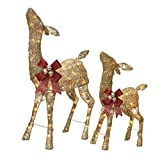 NOMA Pre-Lit Light Up Glitter Deer Set | Christmas Holiday Lawn Decoration | Indoor/Outdoor | 2.8' & 2' Feet Set | 2 Pack