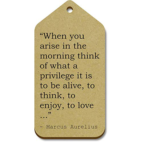 10 x Large 'When you arise in the morning think of what a privilege it is to be alive, to think, to enjoy, to love ...' Quote By Marcus Aurelius Wooden Gift Tags (TG00004003)